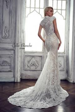 Calla-Blanche-SFA-17104L_back